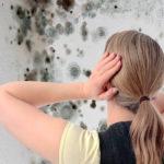 Как бороться с высокой влажностью воздуха